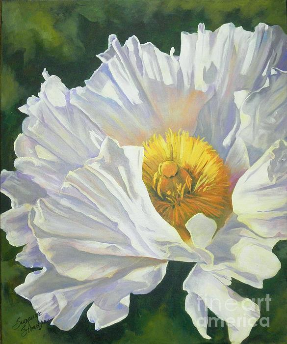 Suzanne Schaefer - White Poppy