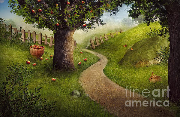 Nikolina Petolas - Nature design - apple orchard