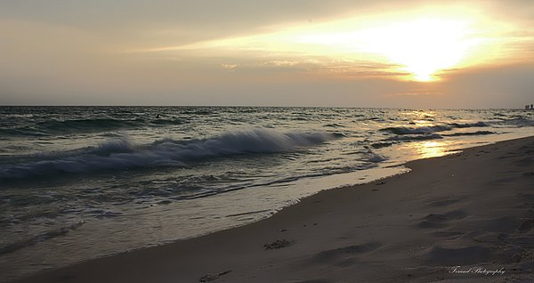 Debra Forand - Panama City Beach Golden Sunset