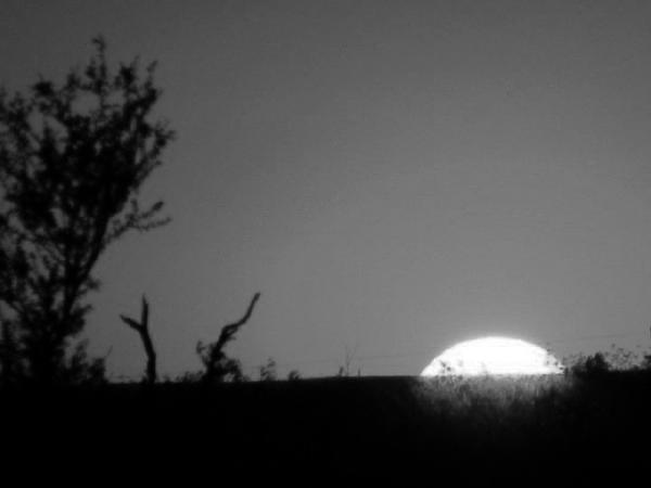 Shawn Hughes - Texas Sunset Black and White
