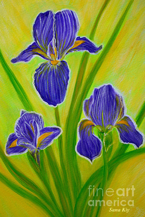 Oksana Semenchenko - Wonderful Iris Flowers 3