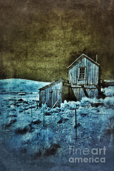 Jill Battaglia - Shack in Infrared