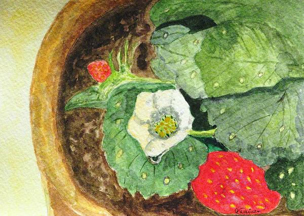 Angela Davies - A Balcony Strawberry Plant