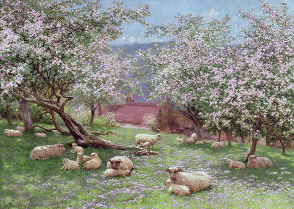William Biscombe Gardner - Appleblossom