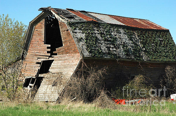 Ginger Harris - Bordman Road Barn