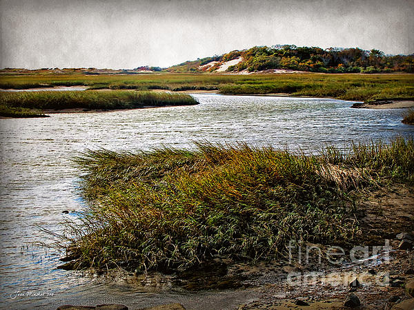 Joan  Minchak - Cape Cod National Seashore