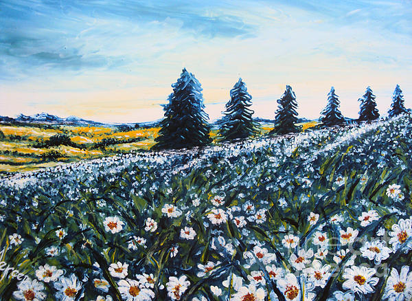 Drinka Mercep - Field of Flowers
