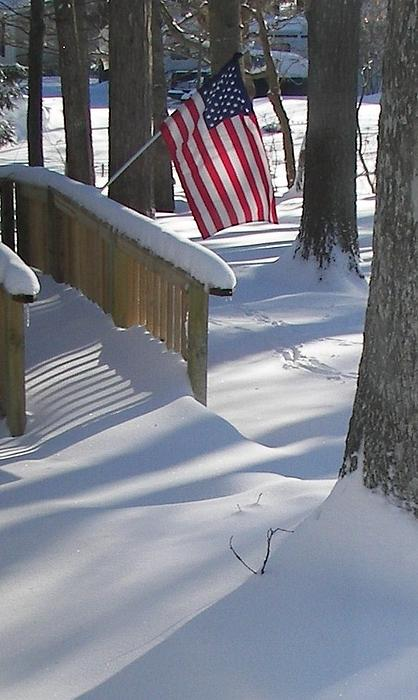 Pamela Hyde Wilson - Flag Over Morning Snow