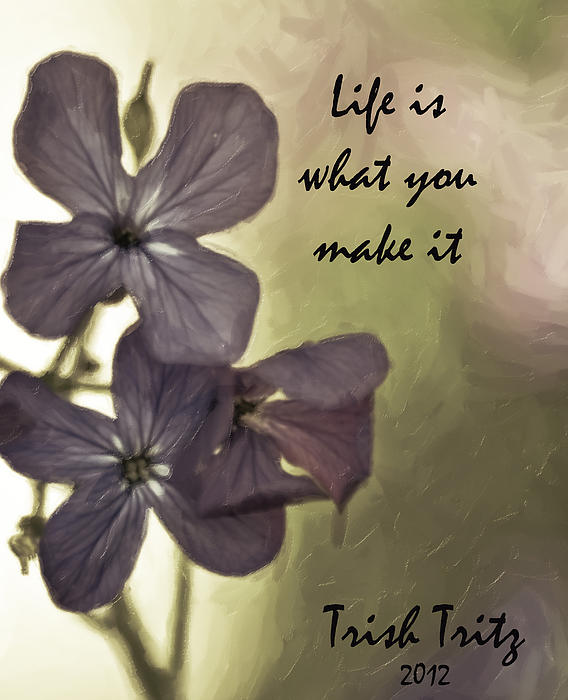 Trish Tritz - Life Is What You Make It