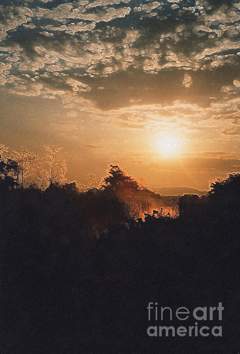 First Star Art  - Nepal Jungle Sunrise