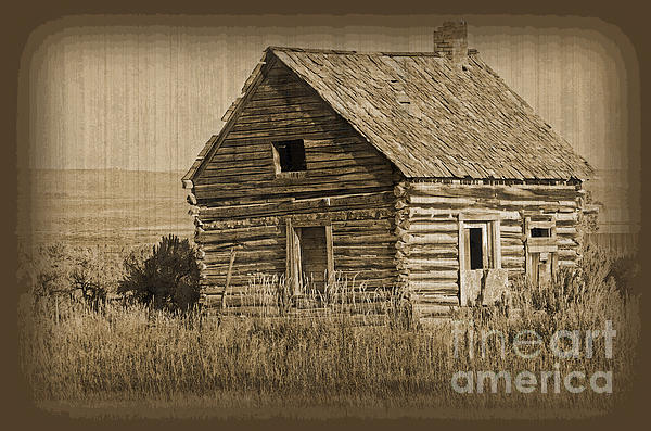 Donna Van Vlack - Old Hunting Cabin - Wyoming