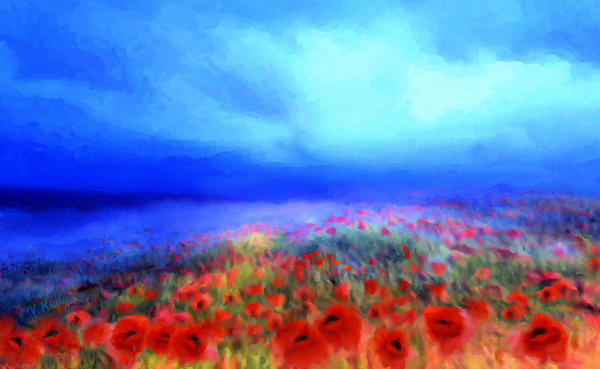 Valerie Anne Kelly - Poppies in the mist