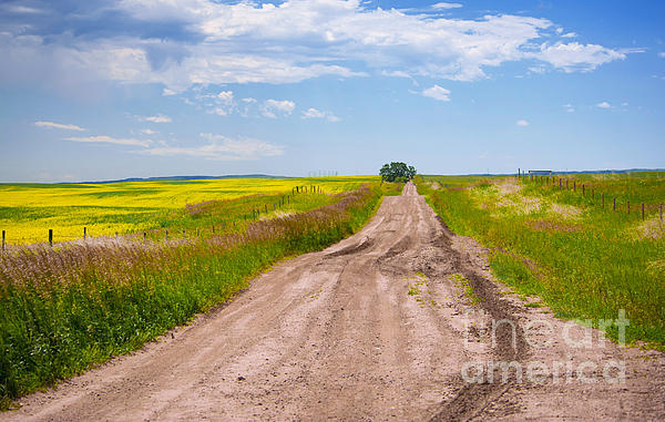 Prairie Poetry - Prairie Road