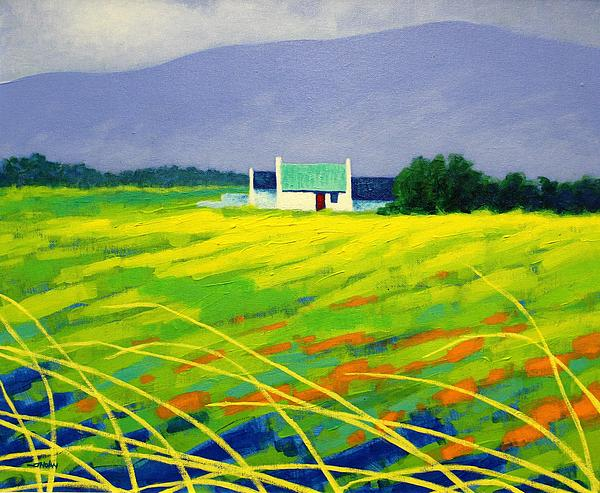 John  Nolan - Red Door County Wicklow