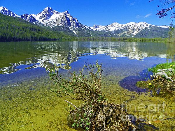 Photography Moments - Sandi - Stanley Lake - Beautiful Outdoors