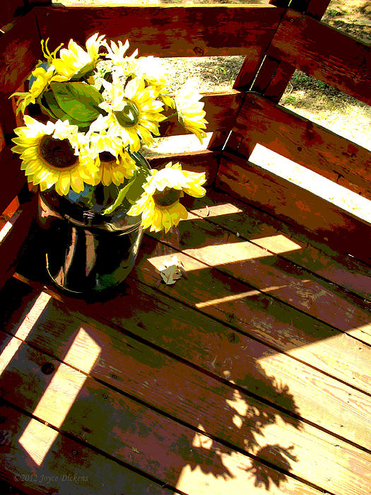 Joyce Dickens - Sunflower Patio