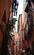 Dany Lison Photography - Narrow Street in Vernazza
