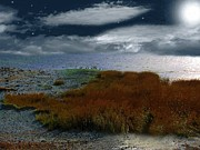 RC deWinter - Salt Marsh at the Edge...