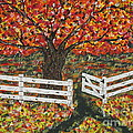 Jeffrey Koss -   Autumn At The White...