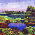 David Lloyd Glover -  Country View Estate