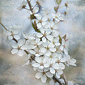 Gynt Art -  Flowering tree