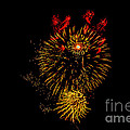 Robert Bales - Abstract Fireworks