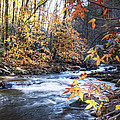 Debra and Dave Vanderlaan - Autumn Stream