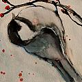 Jani Freimann - Black Capped Chickadee