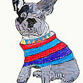 Brian Buckley - French Bulldog