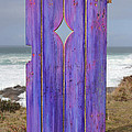 Asha Carolyn Young - Purple Gateway to the Sea