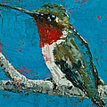 Jani Freimann - Ruby-Throated Hummingbird