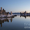 Sandra Bronstein - Dawn on Mono Lake