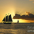 Olga Hamilton - Key West Sunset