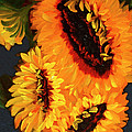 Diane Schuster - Painted Sunflowers