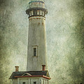 Erik Brede - Pigeon Point Light...