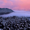 Katie Wing Vigil - Pink Sunrise With Foggy...