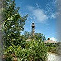 Bob Swanson - Sanibel Island lighthouse