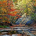 Robert Harmon - Autumn Stream