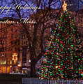 Joann Vitali - A Boston Holiday