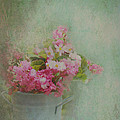 Carla Parris - A Bucketful of Pink...