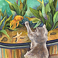 Anne Gifford - A Cat and a Fish Tank