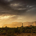 Saija  Lehtonen - A Desert Monsoon Sunset