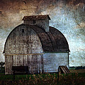 Cassie Peters - A Kalona Barn