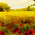 Valerie Anne Kelly - A Poppy meadow