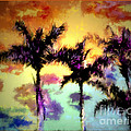 Irma BACKELANT GALLERIES - A Rainbow Of Palms