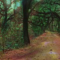 Lenore Senior and Sharon Burger - A Walk in the Woods