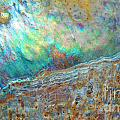 Kris Hiemstra - Abalone Abstract2