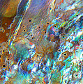 Kris Hiemstra - Abalone Abstract3