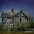 Terry Rowe - Abandoned Dream