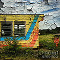 Amy Cicconi - Abandoned Yellow Trailer